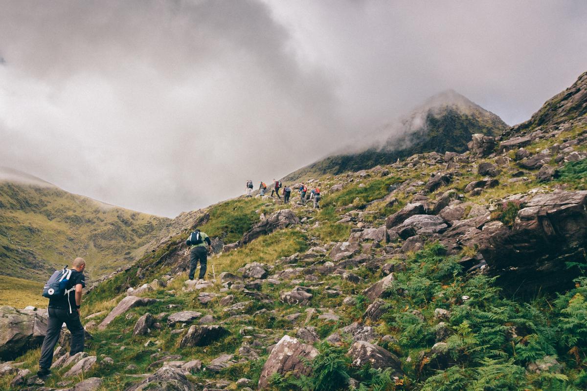 Nature Photography Ireland